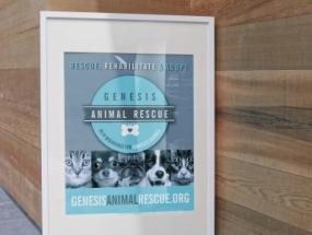 Genesis Animal Rescue